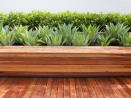 Bench Seat Backing Onto Planter Bed