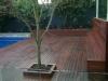 decking-sydney-6_0