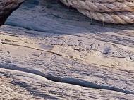 millboard driftwood jetty decking.jpg